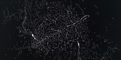 Le tronc et les branches